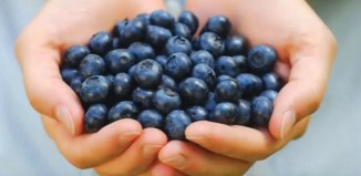 7 Pros and Cons of Blueberries