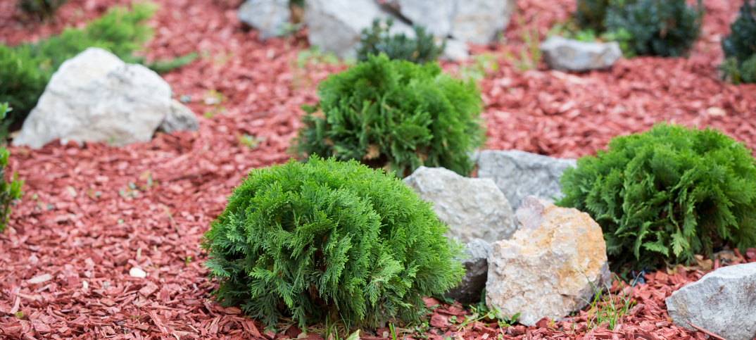 17 Pros And Cons Of Wood Chip Mulch Green Garage