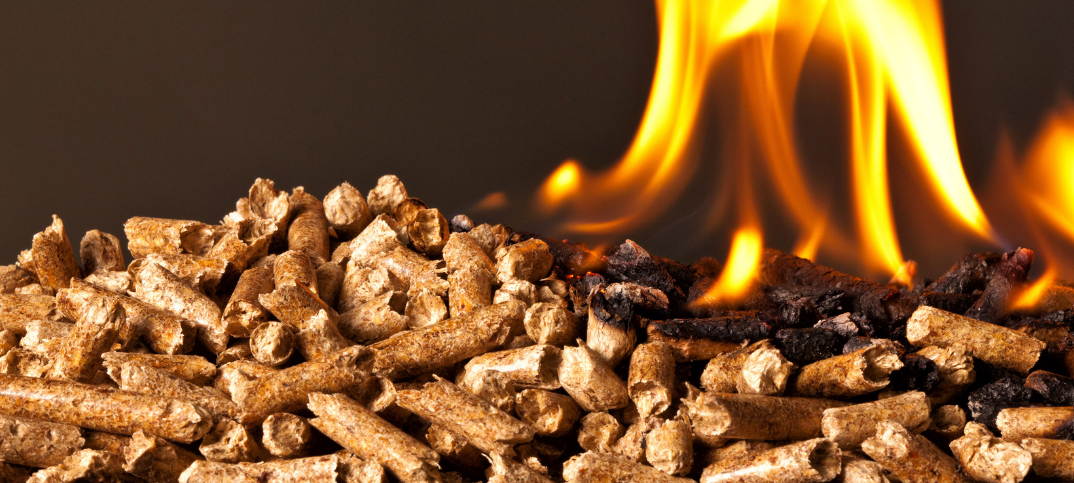 15 Pros and Cons of a Pellet Burning Stove