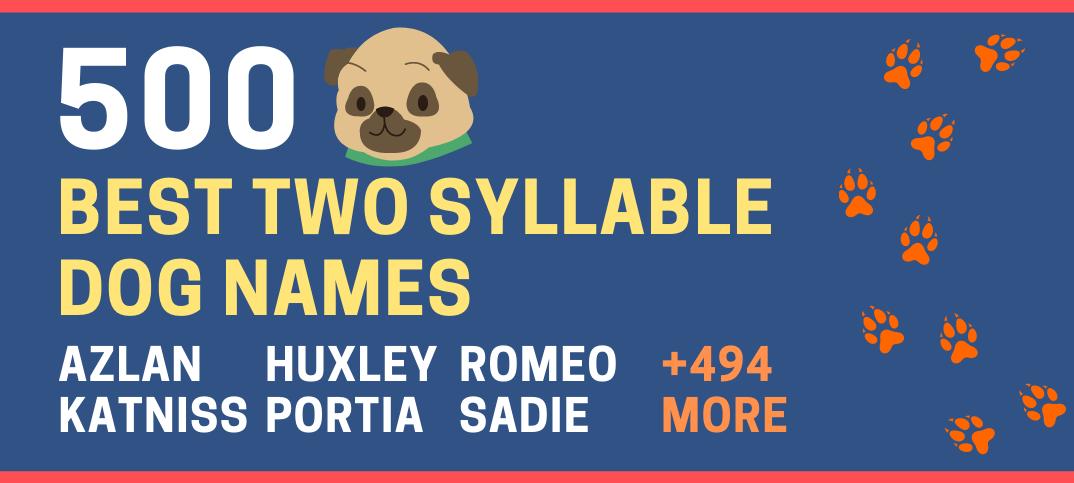 Two Syllable Dog Names